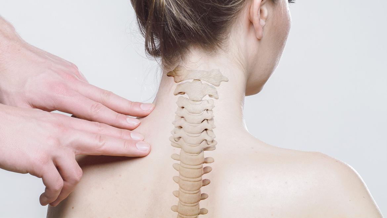 Zestaw ortopedyczny