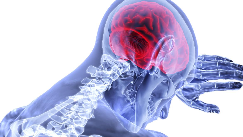 Zestaw neurologiczny